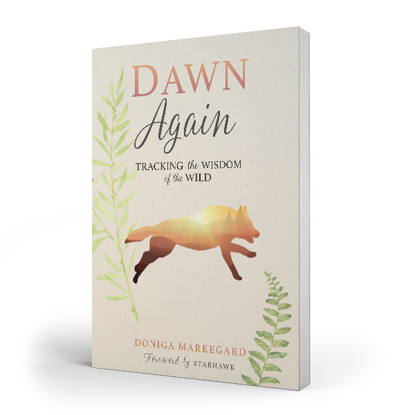 <strong>DAWN AGAIN: TRACKING THE WISDOM OF THE WILD</strong>